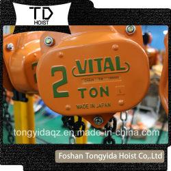 2 Blok van de Keten van de ton het Essentiële het Blok van de Hefboom van 3 Ton het Hijstoestel van de Ketting van de Hand van 5 Ton