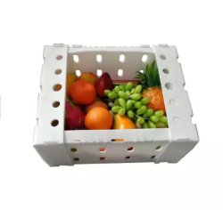 Kartons van de Doos van de Groente van het Fruit van het Pakket van China pp de Plastic Holle