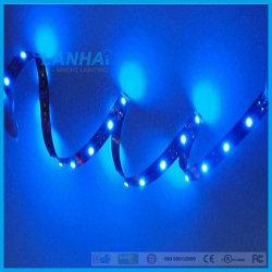 indicatore luminoso di striscia dell'azzurro LED di 12V SMD 5050 30LED/M