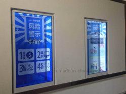 Dedi 55pouces écran tactile de capacitance 10points Affichage LCD transparent