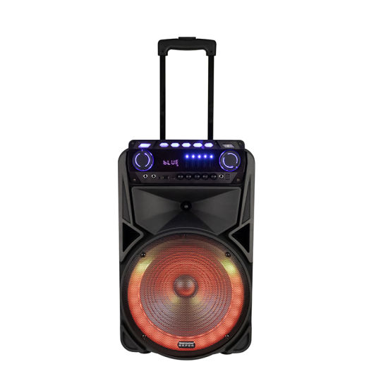 2021 Newest Bluetooth Speaker 12 Inch Karaoke Party Box Portable Plastic Active DJ Trolley Speaker with Built in Rechargeable Battery