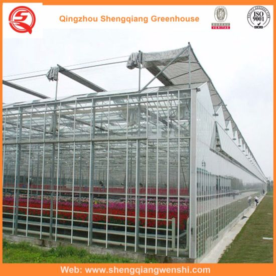 Polycarbonate Hydroponics System Green House Vertical Farming Companies for Vegetables/Flowers/Fruit/Garden
