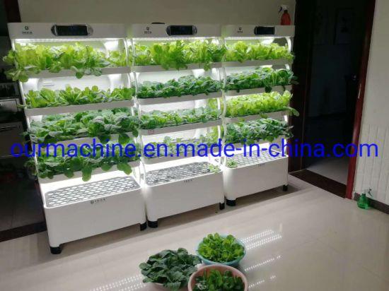 Hydroponics Soilless Cultivation Smart Flowers, Vegetables LED Grow Light