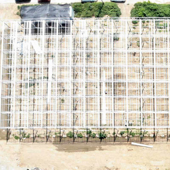 Galvanized Steel Pipe Frame Film Greenhouse with New Type