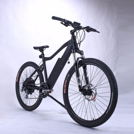 27502 Mountain Lithium Electric Bicycle pictures & photos