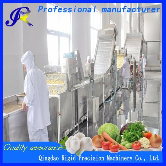 Assembly Line Equipment Packaging and Cleaning of Leafy Vegetables