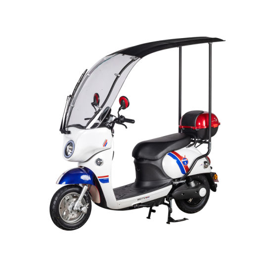 Electric Motorcycle with 1000W Motor and Lithium and Acid Battery