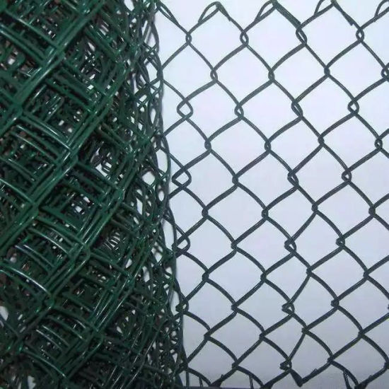 Hot Sale colored PVC Chain Link Fence garden fence