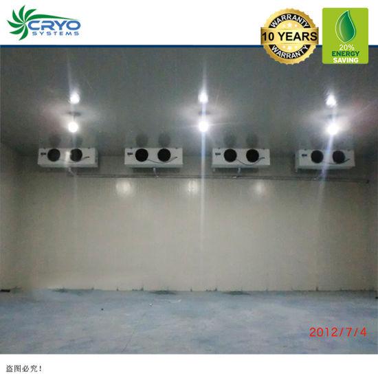 20% Higher Efficiency Chicken Distributors Easy Installation Medina Cold Storage Commercial Refrigeration Rooms for Frozen Fish