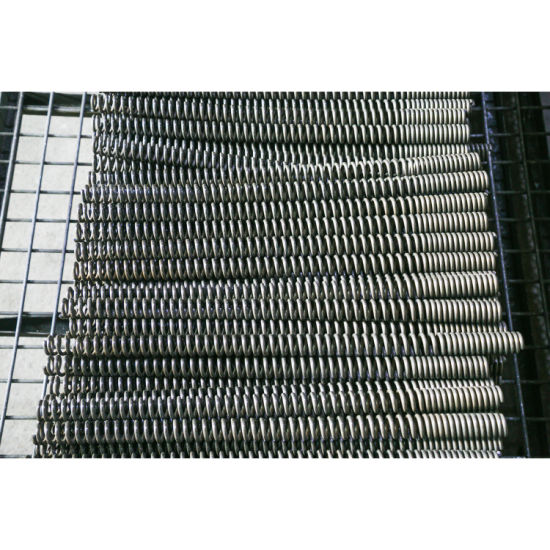 Stainless Steel Spring for Production Lines