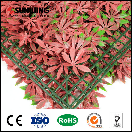 Natural Looking Artificial Boxwood Panel Hedge Mat pictures & photos