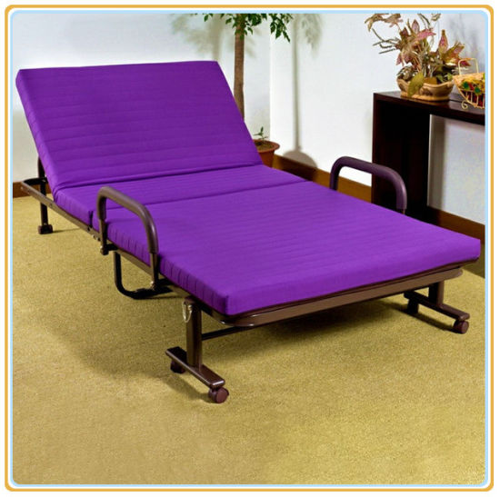 Wholesale Sofa Bed/Sofa Cum Bed/ Folding Sofa Bed Latest Design