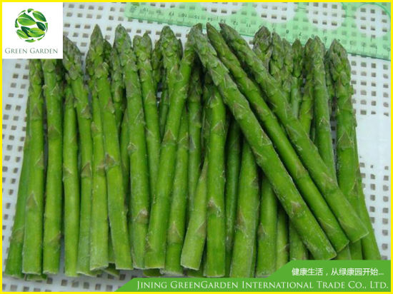 Frozen Green Whole Asparagus for Exporting