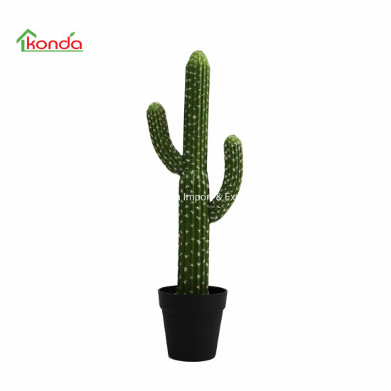 Indoor and Outdoor Decorations Artificial Large Plastic Cactus