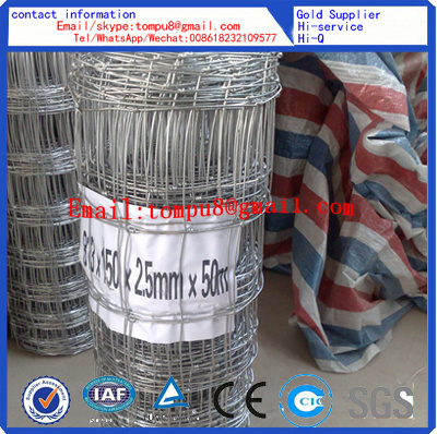 China Galvanized Cattle Fence Wire Mesh ISO - China Cattle Fence ...