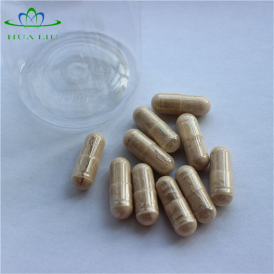 Tribulus Terrestris Capsule, Tribulus Terrestris Extract, Tribulus Terrestris pictures & photos