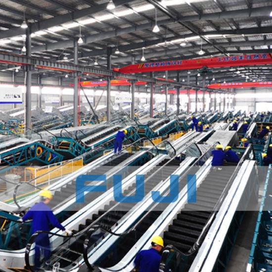Japan-China Join Venture FUJI Economic Price Escalator for Sale