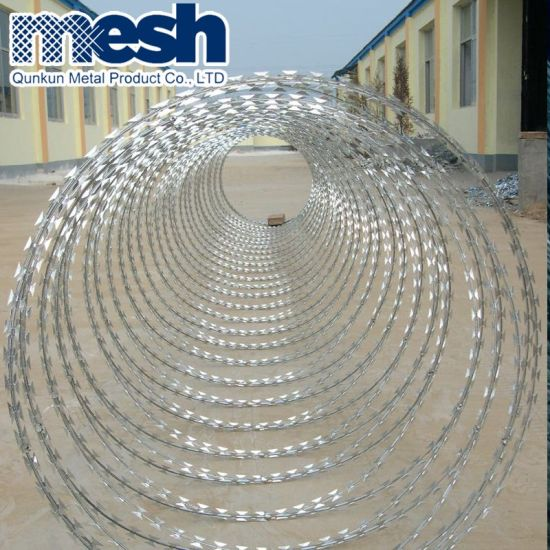 Hot Dipped Galvanized Razor Wire Bto-22 pictures & photos