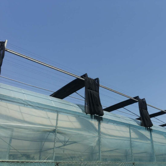 Plastic Film Greenhouse for Hydroponic Growing
