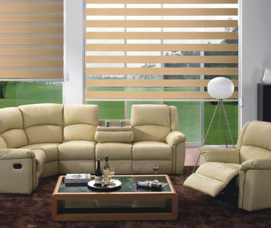 New Design Hot-Selling Sunshutter Venetian Roller Blinds for Decoration pictures & photos