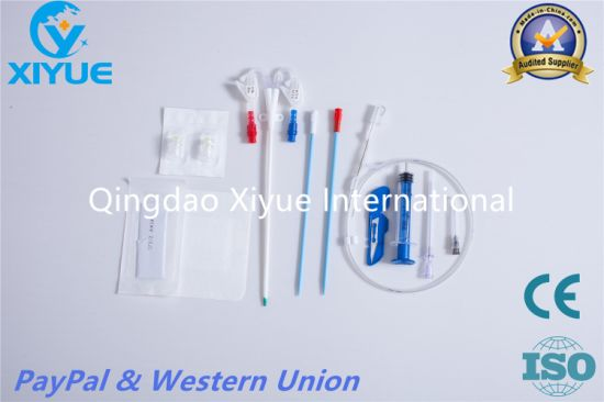 Blood Purification Series Hemodialysis Catheter with High Quality