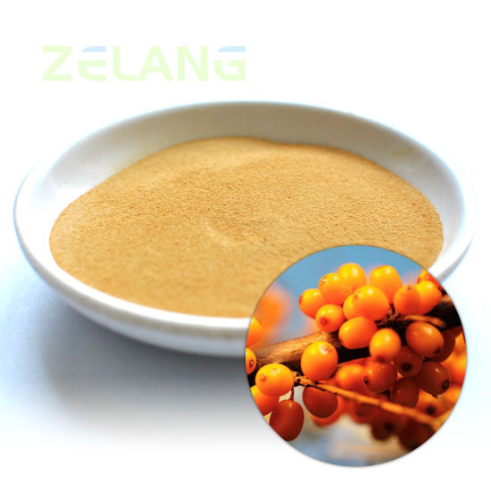 Sea Buckthorn Fruit Extract pictures & photos