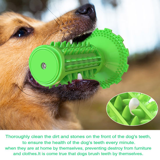 Amazon Best Seller TPR Teeth Cleaning Serrated Molar Rod Dog Toothbrush Chew Play Bite Pet Dog Toy/Pet Toy