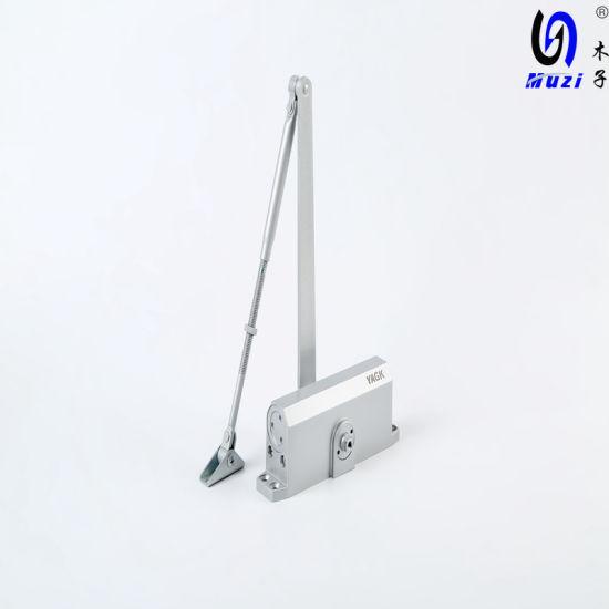 Building Aluminium Door Closer Mz 5044 for 60-85kg Door