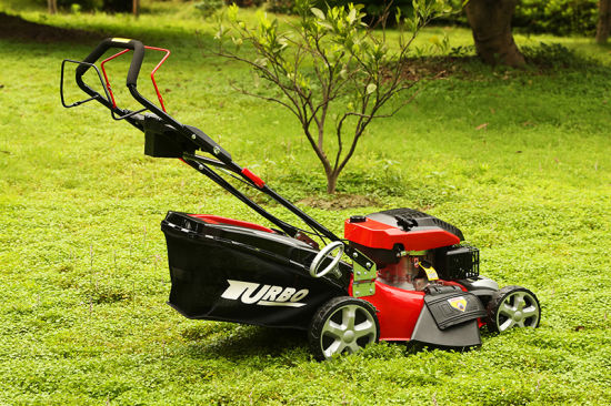 20 Inch Self-Propelled Electric Start Garden Lawn Mower 3 in 1