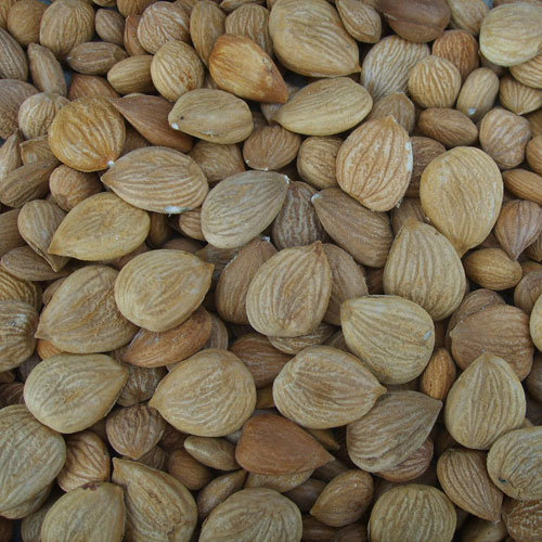 CAS No. 8013-76-1 Bitter Almond Oil Cosmetics Fragrance&Food Flavour Base Oil Essential Oil Skin Care Chemical Plant Extract Health Care