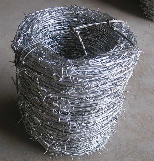 Hot-Dipped Galvanized Iron Barbed Wire in Best Price pictures & photos