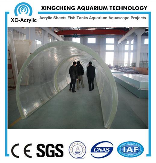 Customized Transparent PMMA Tunnel Aquarium