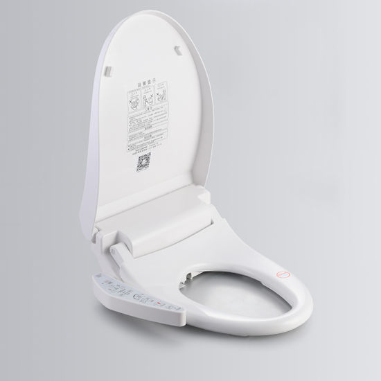 China Smart Water Jet Heated Warm Electric Toilet Seat   China