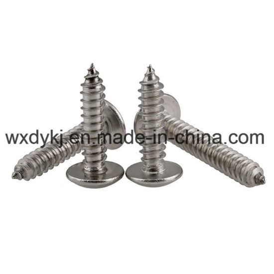 Truss Head Philips Stainless Steel Self Tapping Screw