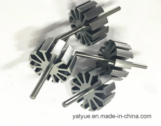 High Quality Customized Rotor for Micro Car Motor pictures & photos