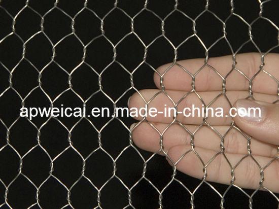 Hot Sale Galvanized Chicken Wire (Direct Factory Price)