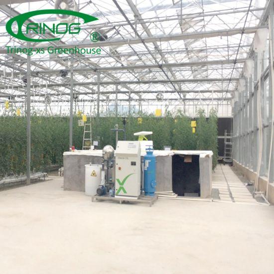 high tech hydroponics system for tomato hydroponics