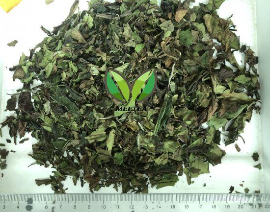 2019 New Product Pai Mu Tan White Tea in EU Standard