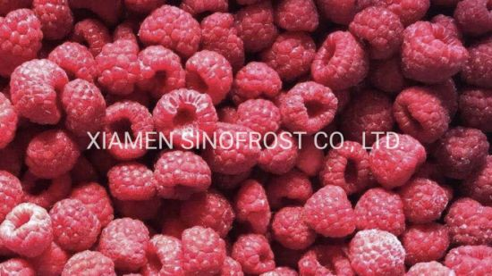 Heritage Variety, IQF Red Raspberries, Cultivated, IQF Whole Raspberries, IQF Raspberries Crumbles, IQF Raspberries Brokens, IQF Cutivated Red Raspberries