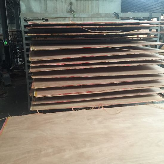 Good Quality 4*8/5*10 Commercial Plywood Prices pictures & photos