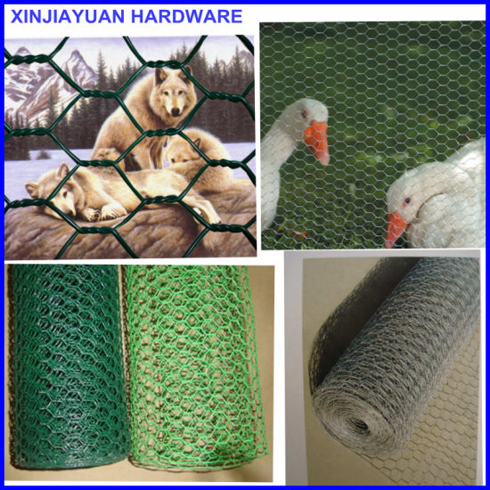 Chicken Coop Wire Fencing Hexagonal Wire Mesh Netting pictures & photos