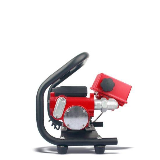 Portable Diesel Fuel Transfer Pump Assy