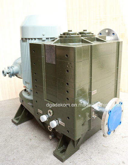 Claw Horizontal Industry Dry Water Cooling Vacuum Pump (DCHS-8U1/U2) pictures & photos
