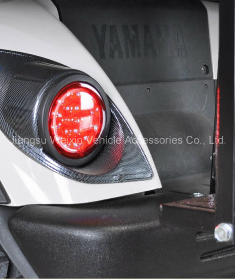 Yam Drive Carbon Fiber Basic Light Kit Automotive Lamp pictures & photos
