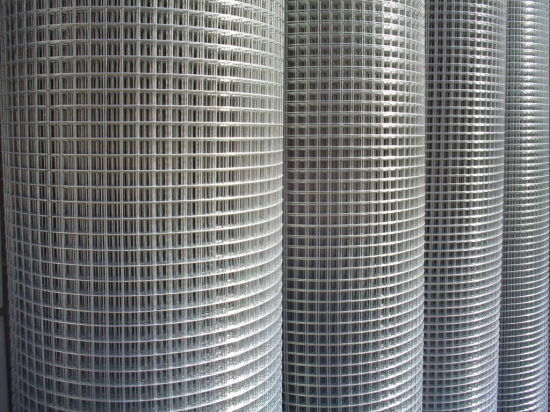 Factory for Electro Galvanized Welded Wire Mesh pictures & photos