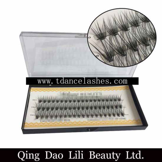 4ad673ab1c6 Wholesale Premade Volume Fan Lashes Individual Eyelashes Cluster Eyelash  Extension 2D-10d pictures & photos