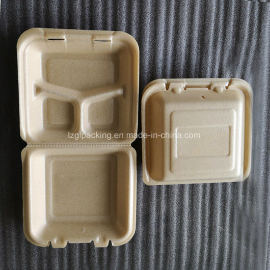 Disposable Biodegradable Foam Packaging Corn Starch Fast Food Container