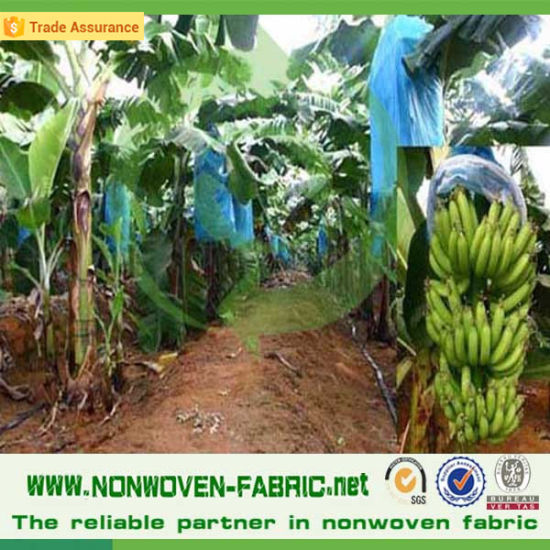 Breathable Nonwoven Fabric for Agriculture Cover pictures & photos