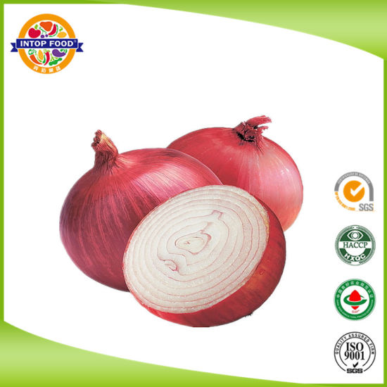 Chinese Fresh Red Onion with High Quality of 5-7cm
