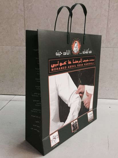 Top Quality Plastic Handle Paper Gift Bags for Textiles (FLP-8923)
